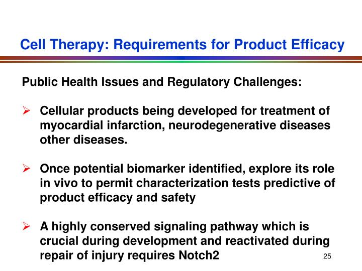 Cell Therapy: Requirements for Product Efficacy