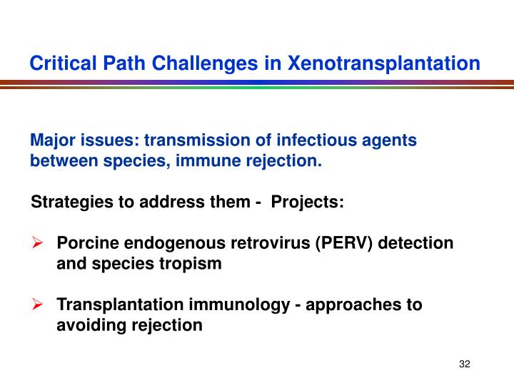 Critical Path Challenges in Xenotransplantation