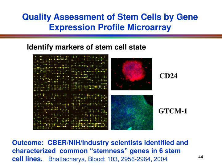 Quality Assessment of Stem Cells by Gene Expression Profile Microarray