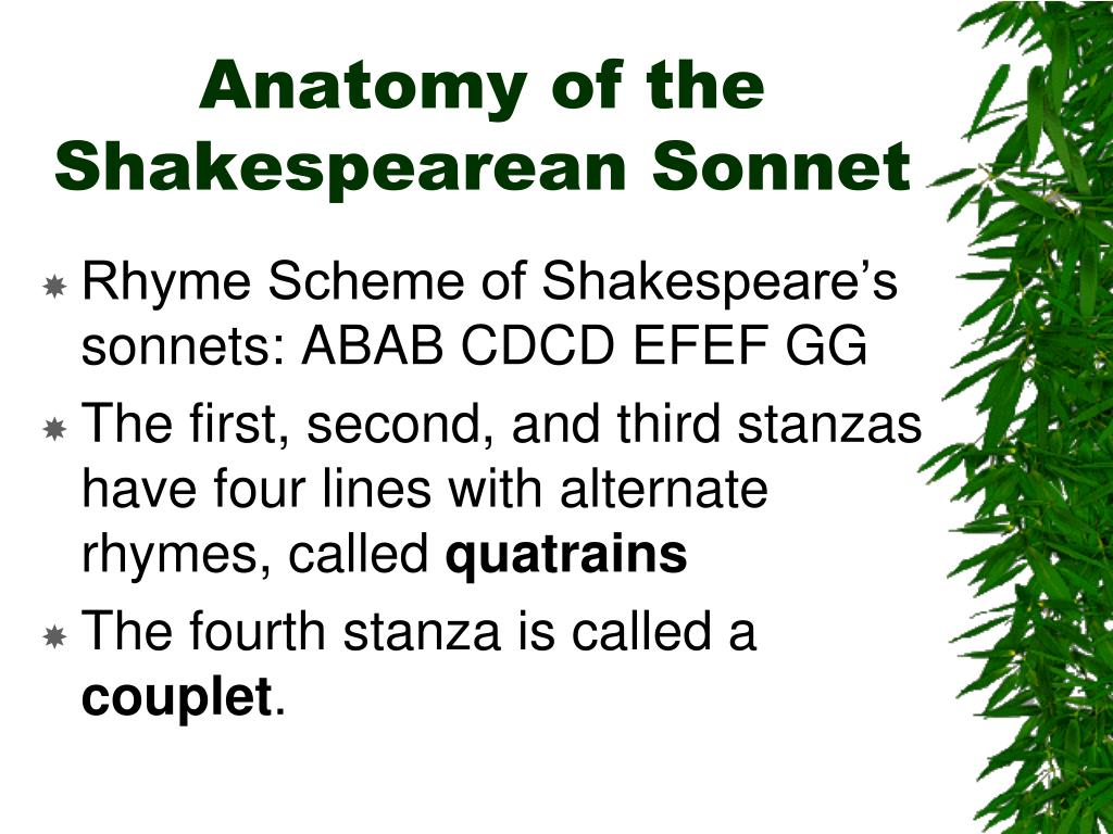 Anatomy of the Shakespearean Sonnet