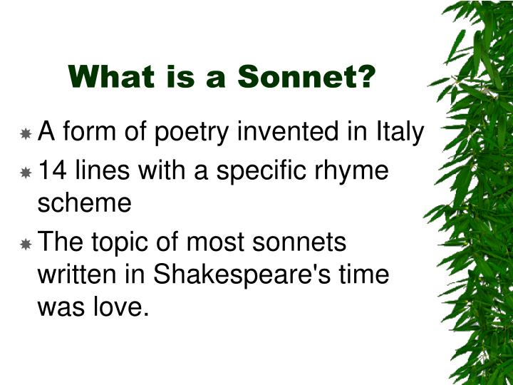 What is a sonnet l.jpg