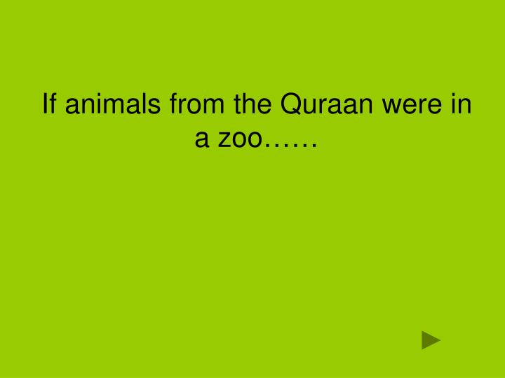 If animals from the Quraan were in a zoo……