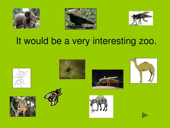 It would be a very interesting zoo.