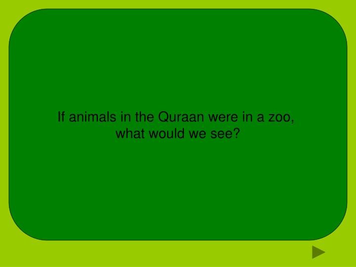 If animals in the Quraan were in a zoo,