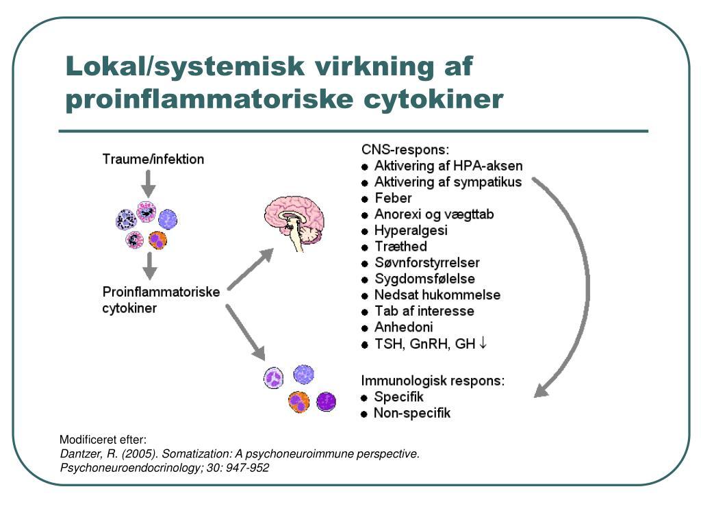 Lokal/systemisk virkning af proinflammatoriske cytokiner