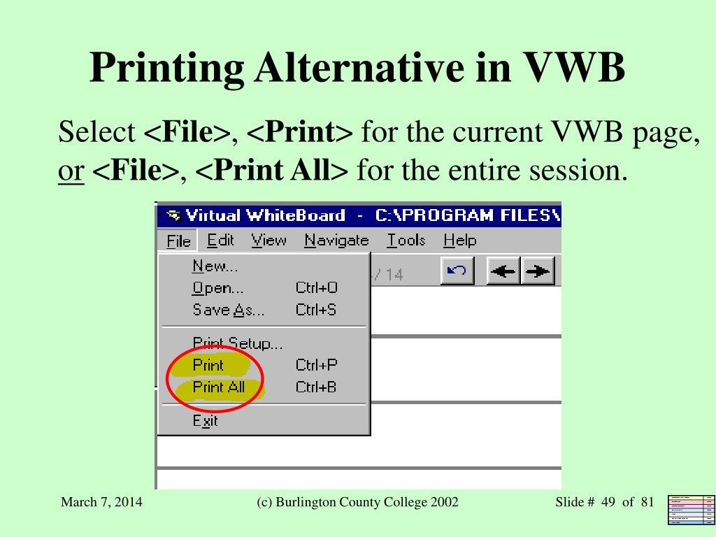 Printing Alternative in VWB