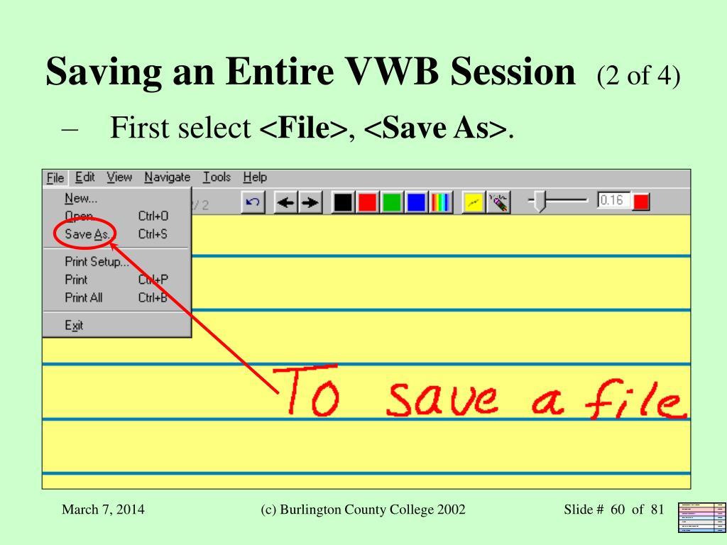 Saving an Entire VWB Session
