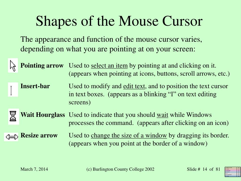 Shapes of the Mouse Cursor