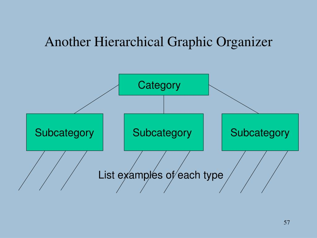 Another Hierarchical Graphic Organizer