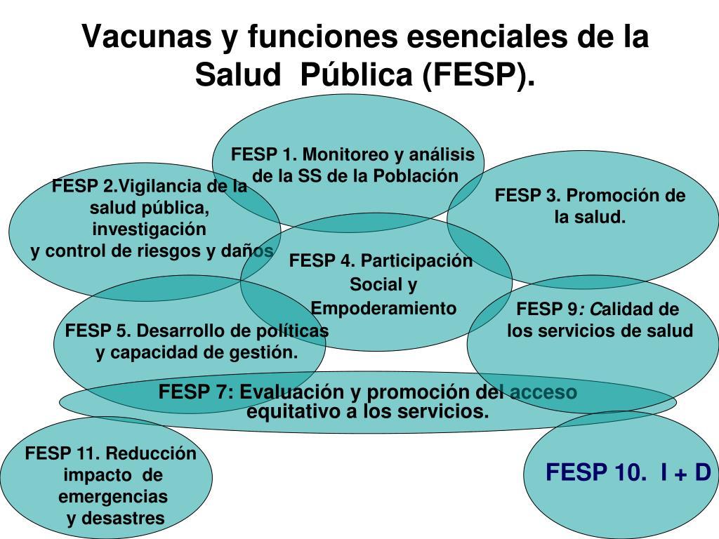 FESP 1. Monitoreo y análisis