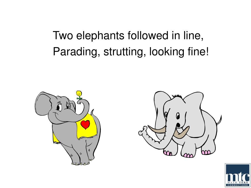 Two elephants followed in line,