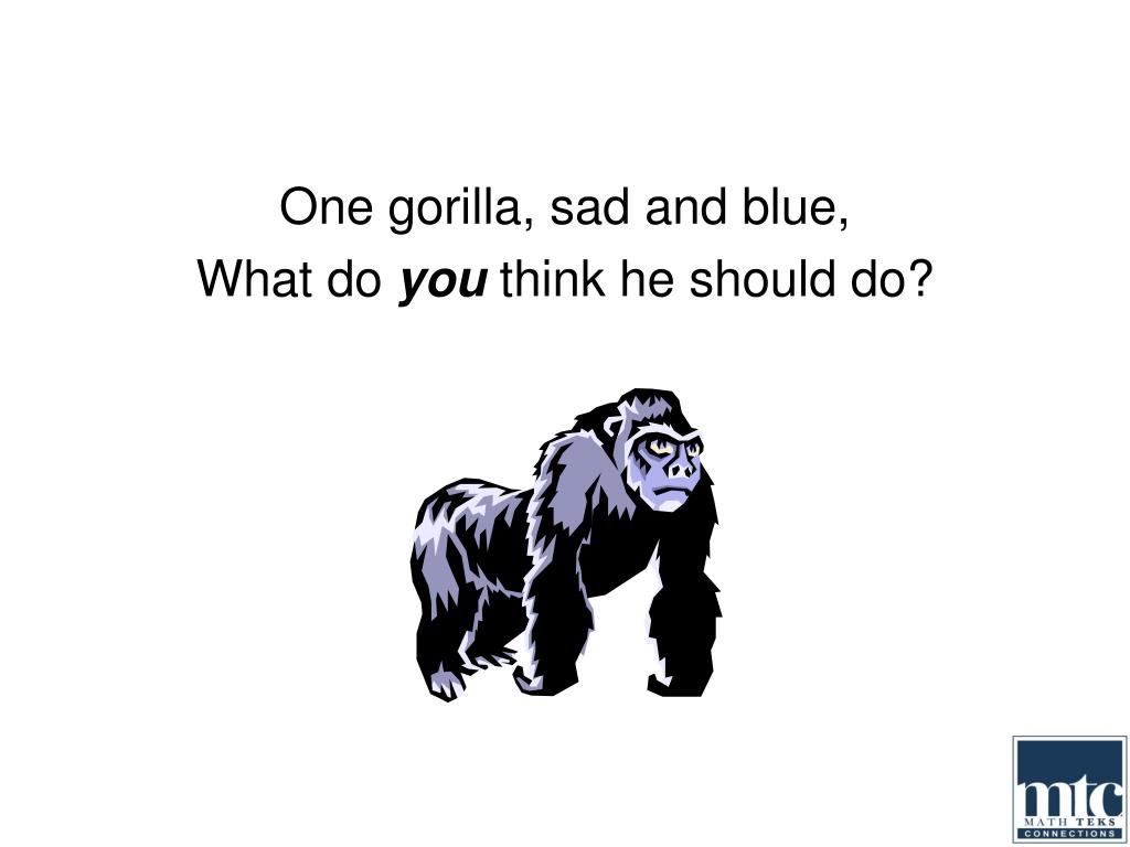 One gorilla, sad and blue,