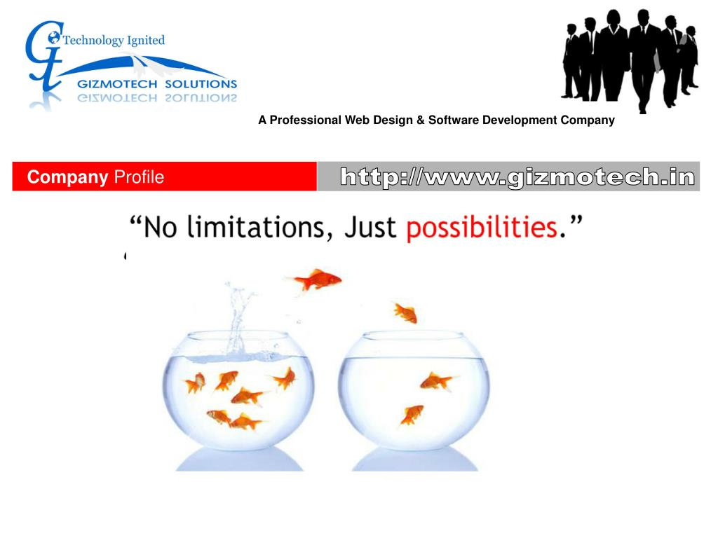 A Professional Web Design & Software Development Company