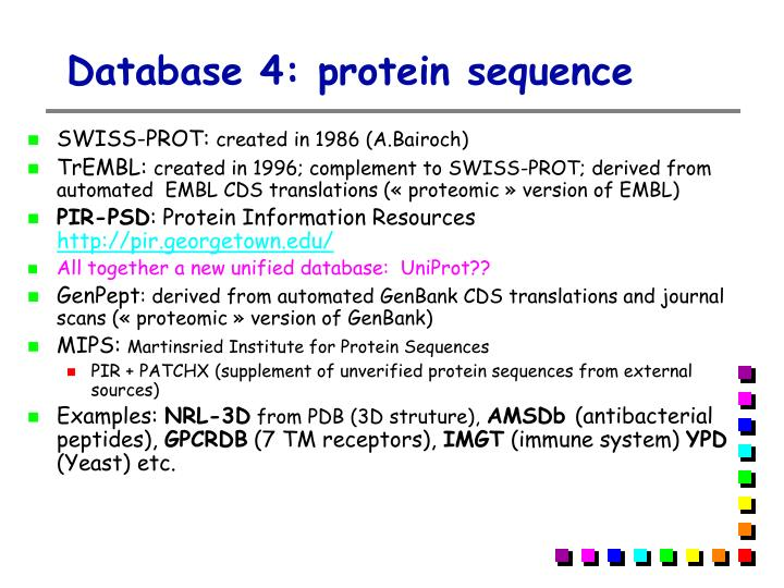 Database 4: protein sequence