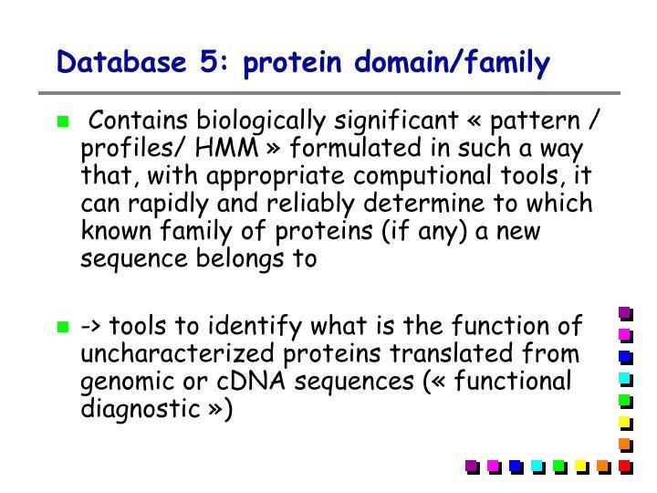 Database 5: