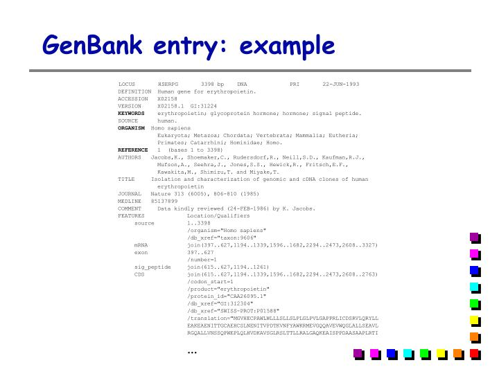 GenBank entry: example