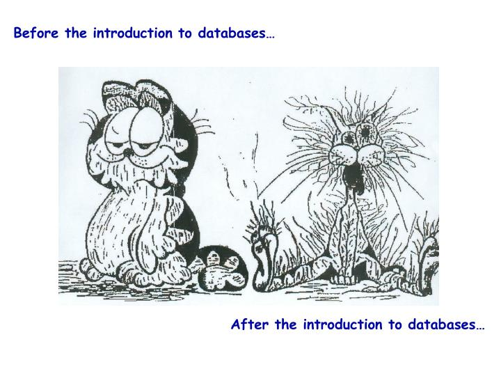 Before the introduction to databases…