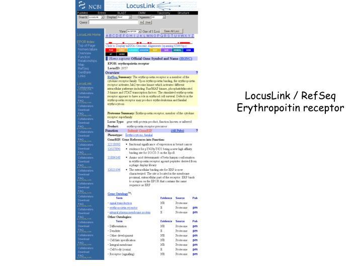 LocusLink / RefSeq