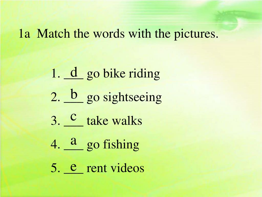 1a  Match the words with the pictures.