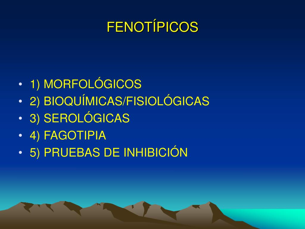 FENOTÍPICOS