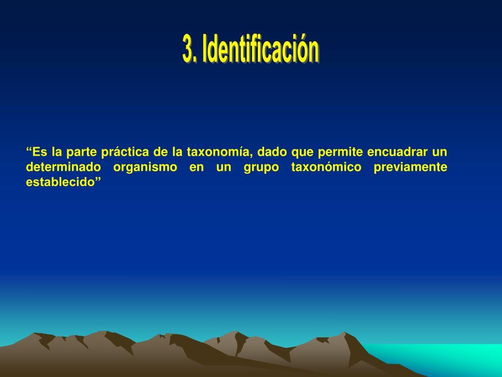 3. Identificación