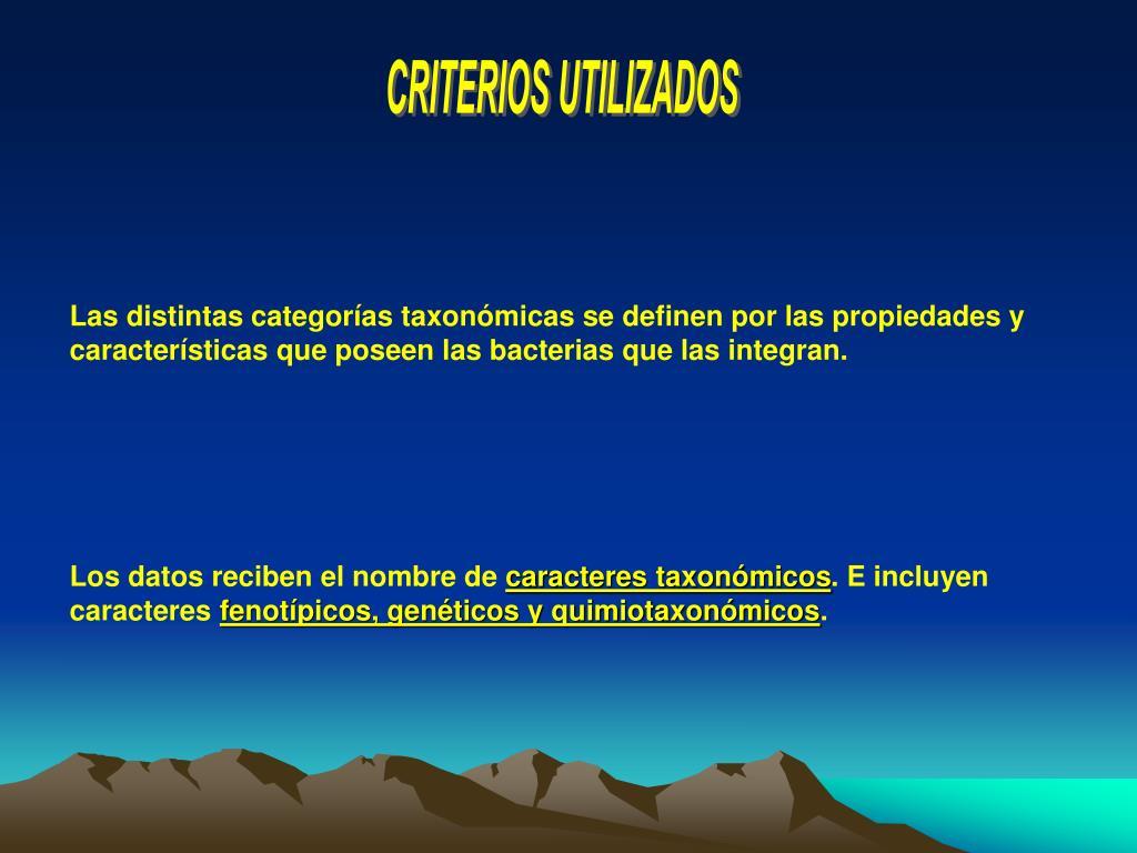 CRITERIOS UTILIZADOS
