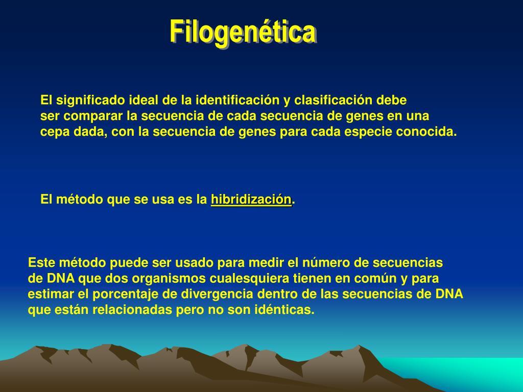 Filogenética
