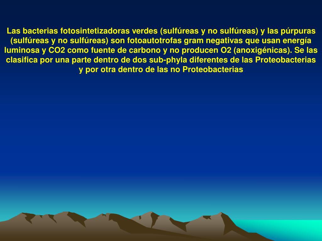 Las bacterias fotosinteti