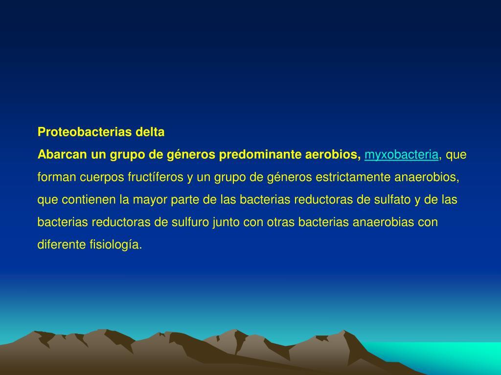 Proteobacterias delta