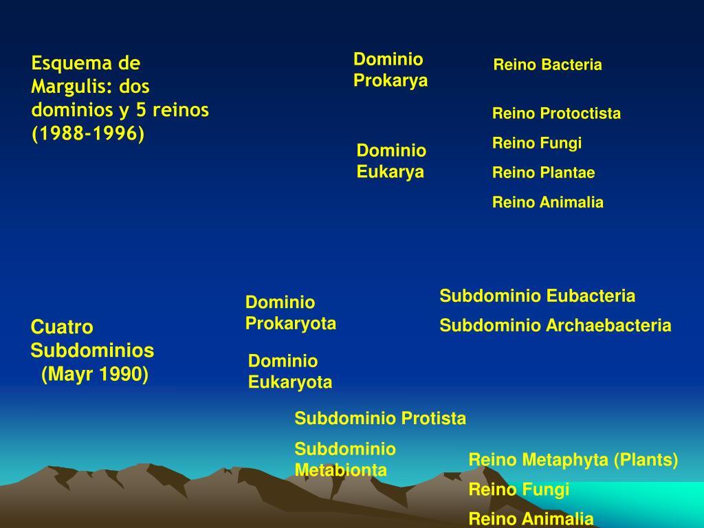 Reino Protoctista