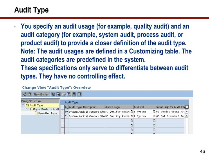 Audit Type