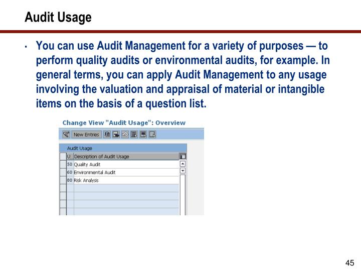 Audit Usage