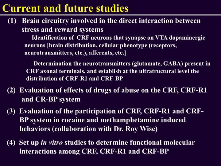 Current and future studies