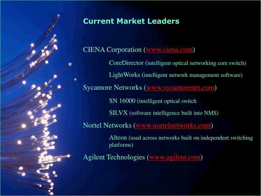 Current Market Leaders