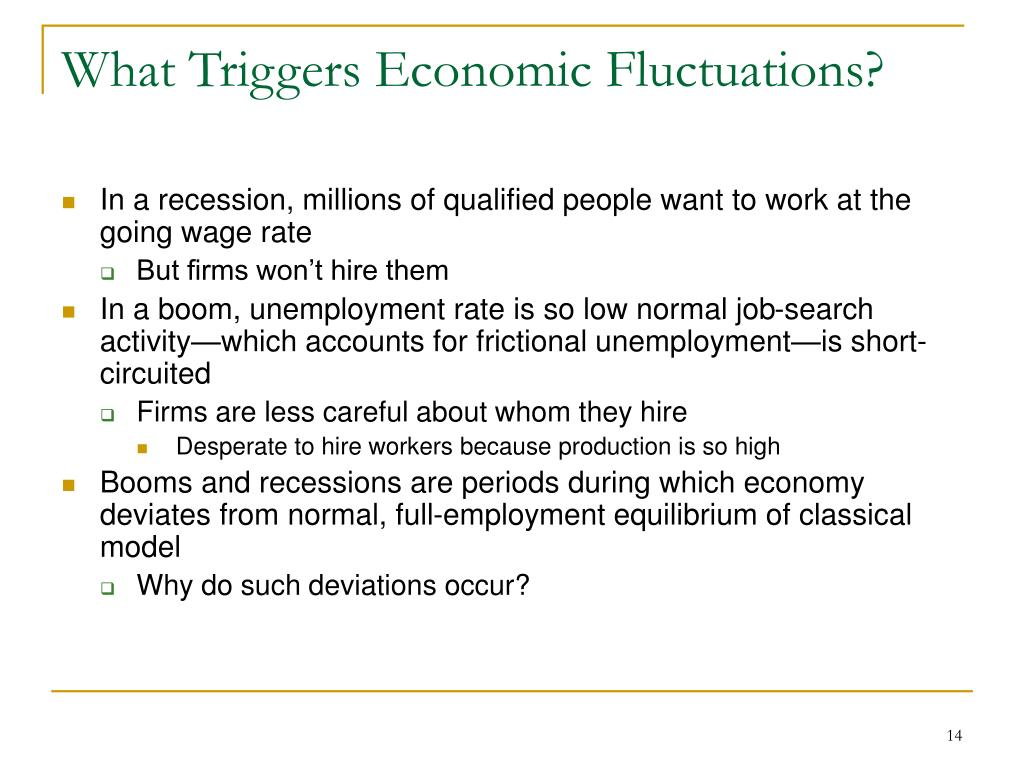 What Triggers Economic Fluctuations?