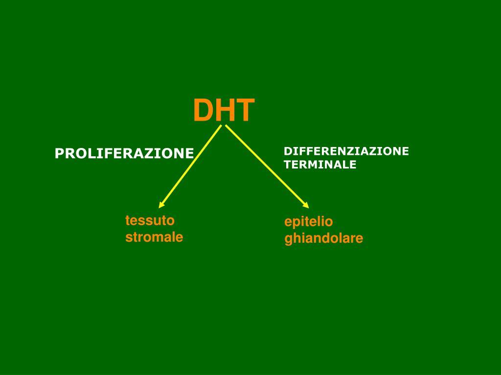 DHT e prostata