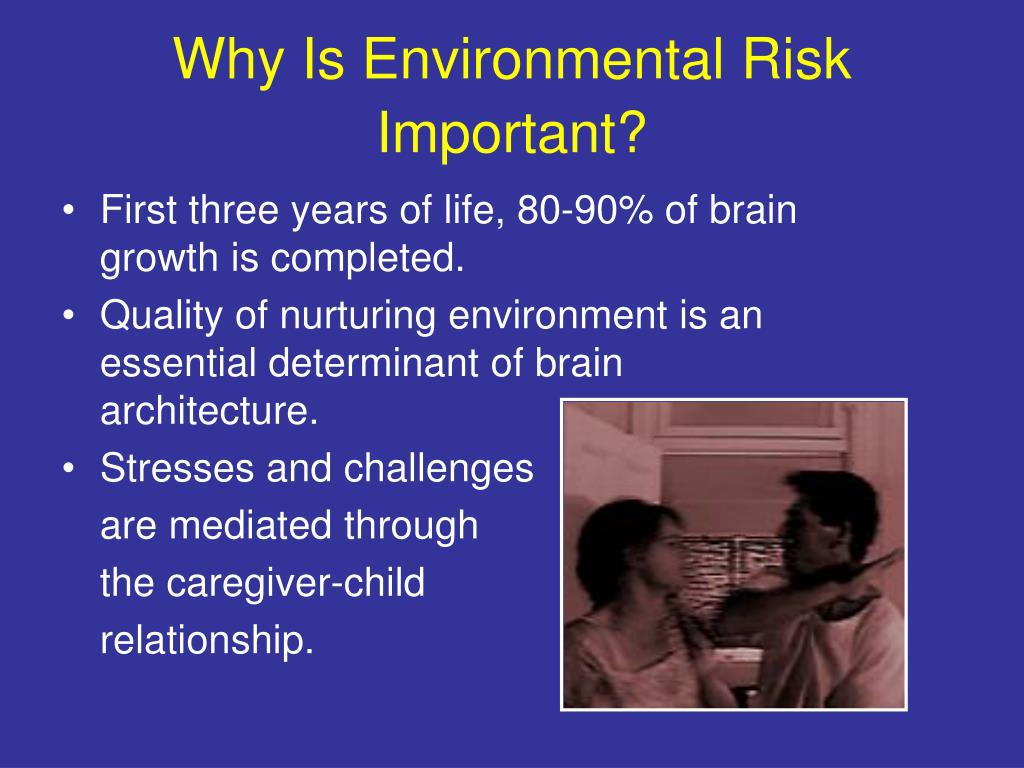 Why Is Environmental Risk Important?
