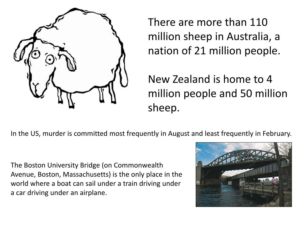There are more than 110 million sheep in Australia, a nation of 21 million people.