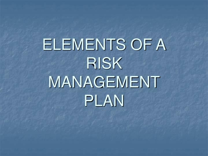 Elements of a risk management plan l.jpg