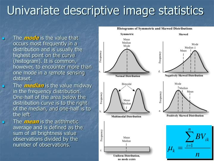 Univariate descriptive image statistics