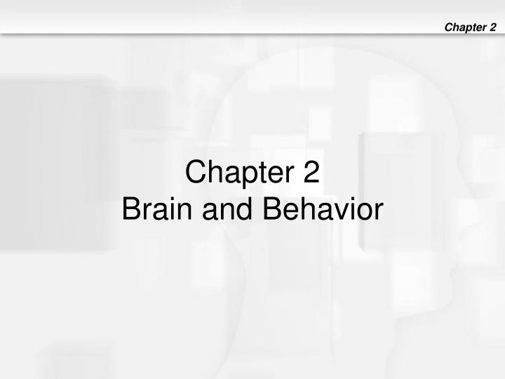 Chapter 2 brain and behavior l.jpg