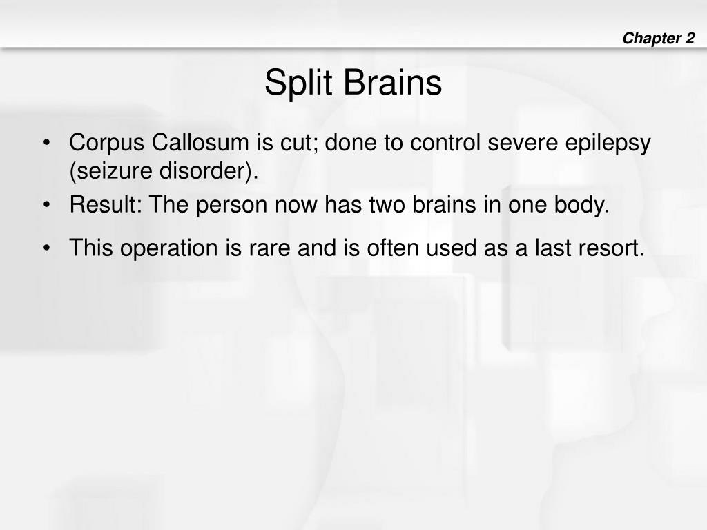 Split Brains