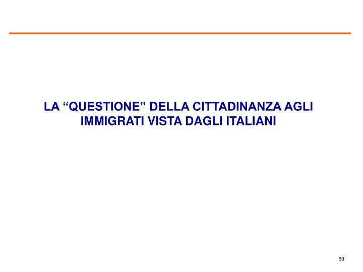 """LA """"QUESTIONE"""" DELLA CITTADINANZA AGLI IMMIGRATI VISTA DAGLI ITALIANI"""