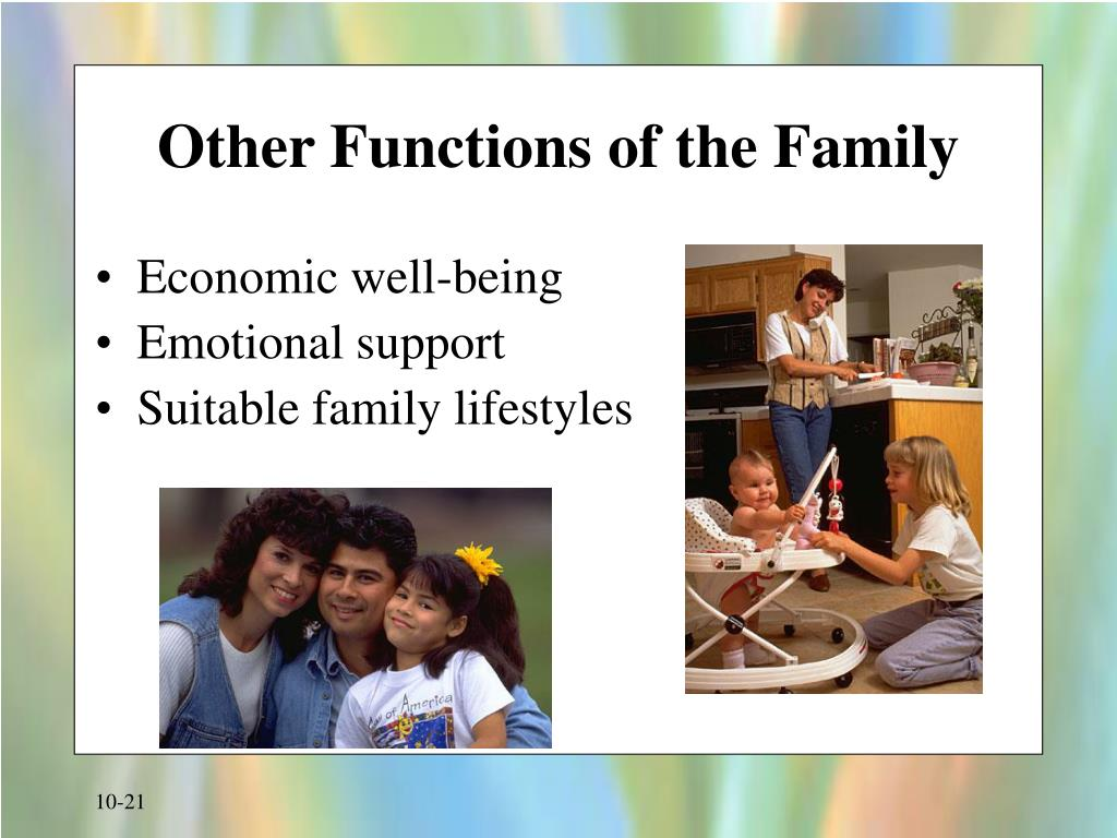 Other Functions of the Family