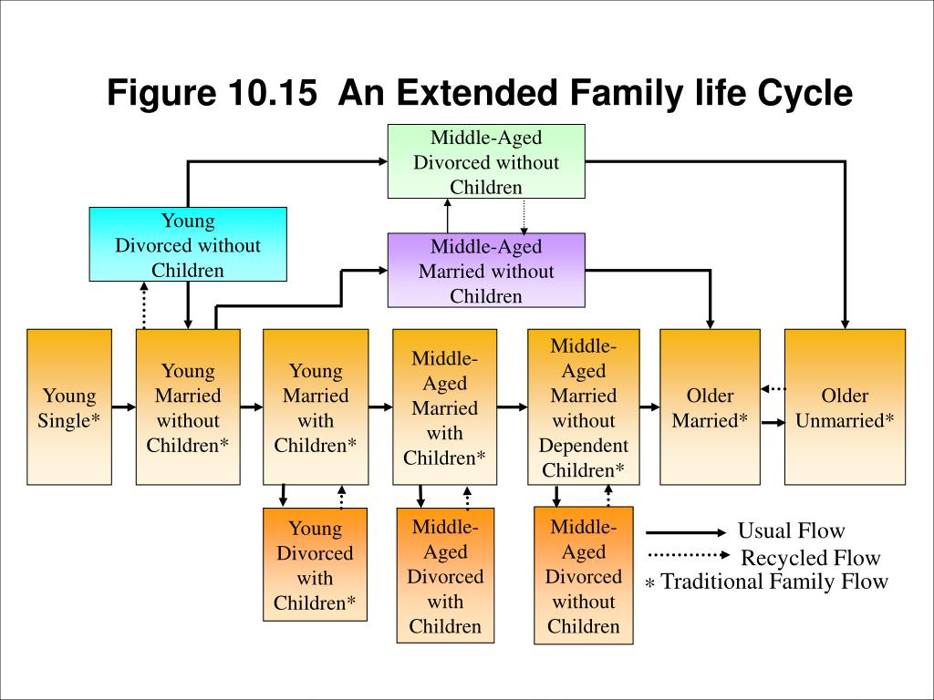 Figure 10.15  An Extended Family life Cycle