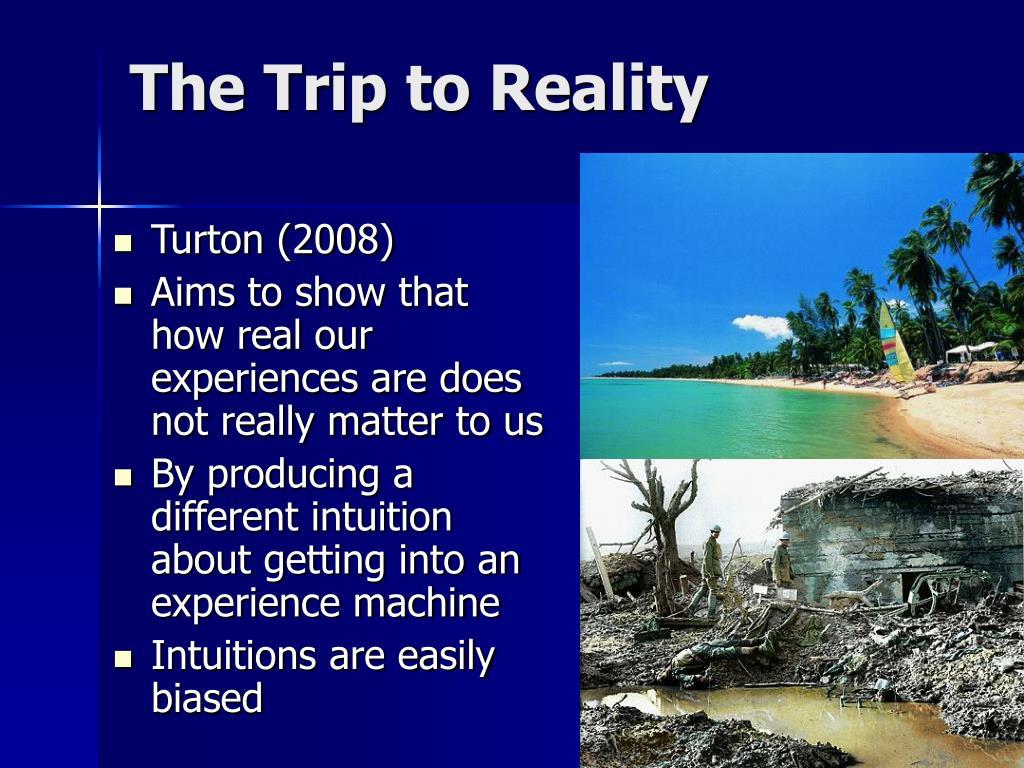 the experience machine