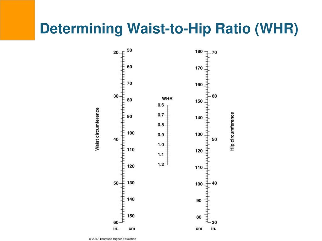Determining Waist-to-Hip Ratio (WHR)
