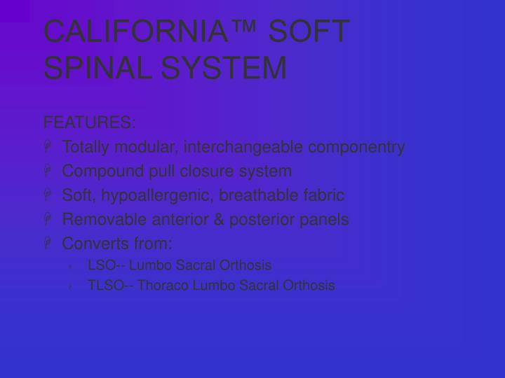 California soft spinal system3