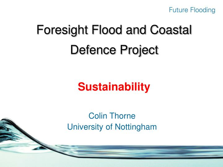 Foresight flood and coastal defence project sustainability