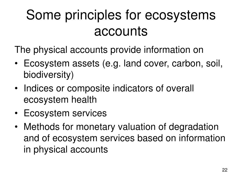 Some principles for ecosystems accounts